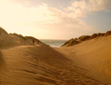 small carousel beaches 4